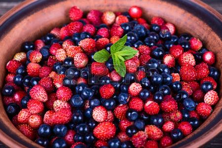 berries 2.jpg