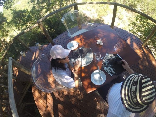 almocando na casa da arvore.jpg
